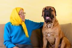 Hög kvinna med den stora hunden Arkivbild