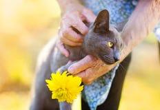 Hög kvinna med hennes katt Arkivbilder