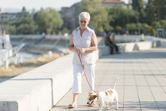 Hög kvinna och hennes hund Arkivbild