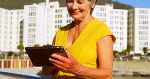 Hög kvinna som använder den digitala minnestavlan på promenad 4k arkivfilmer