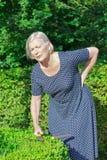 Hög kvinna som arbeta i trädgården ryggvärkryggskott royaltyfri fotografi