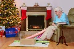 Hög kvinna som minns hennes katt på jultid Fotografering för Bildbyråer