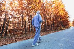 Hög löpare i natur Äldre sportig man som kör i skog under morgongenomkörare royaltyfria bilder