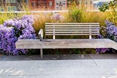 Hög linje NYC för bänk Fotografering för Bildbyråer