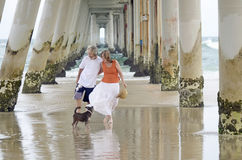 Hög man och kvinna som tycker om en romantisk avslappnande ferie på stranden med den älsklings- hunden