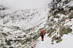 Hög man som fotvandrar i berg i höga Tatras Fotografering för Bildbyråer