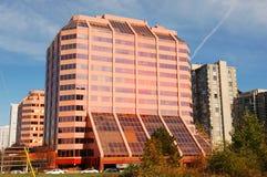 hög modern rosa stigning arkivfoton