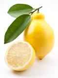 hög mogen citronfotokvalitet Royaltyfria Bilder