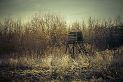 Hög plats för jägare i vinterskog Arkivfoton