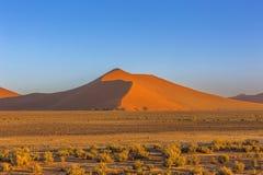 Hög sanddyn arkivbild
