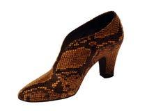 hög sko för mode royaltyfri fotografi