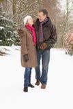 hög snöig gå skogsmark för par Arkivfoton