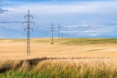 Hög spänningslinje med elektricitetspyloner som omges av kultiverade fält Royaltyfri Bild