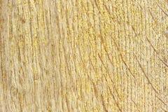 Hög-specificerad wood bakgrundsserie Royaltyfria Foton