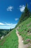 hög trail för höjd Arkivbilder