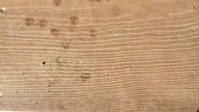 Hög-upplösning brun wood textur Royaltyfria Bilder