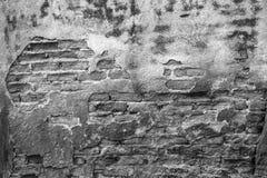 Hög upplösning föreställer den monokromma modellen för tappning av gammal tegelsten Royaltyfri Fotografi