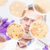 Hög vetenskaperna om olika organismers beskaffenhetforskare. Royaltyfri Foto