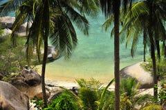 Hög Viewpointö med kokospalmen Arkivbilder
