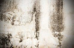 Hög vit grungetexturer och bakgrund för res Fotografering för Bildbyråer