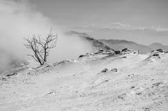 höga berg snow under vinter royaltyfri fotografi