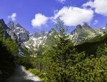 höga bergslovakia tatras Arkivfoto