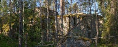 höga klippor Arkivbilder