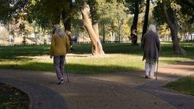 Höga kvinnor som separat går i, parkerar, vårdhemmet för fritid för äldre folk arkivbild