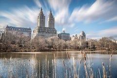 Höga löneförhöjningbyggnader runt om Central Park med oskarp förgrund Royaltyfria Bilder
