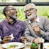 Höga män kopplar av livsstil som äter middag begrepp royaltyfri bild