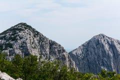 Höga maxima, kanter och skogar på backar i berg av Paklenica, Kroatien royaltyfria bilder