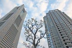 höga moderna skyskrapor Royaltyfria Bilder