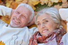 Höga par i höst parkerar Royaltyfria Bilder