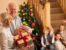 Höga par med barnbarn på jul royaltyfri foto