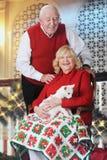 Höga par med katten på jultiden Fotografering för Bildbyråer