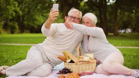 Höga par med video pratstund för smartphone på picknicken arkivfilmer