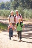 Höga par och barnbarn på land går Royaltyfria Bilder