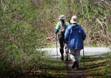Höga par som fotvandrar med att gå pinnar Arkivfoton