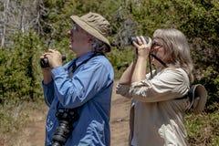 Höga par som fotvandrar och Birdwatching i trän på en Sunny Day Royaltyfri Foto