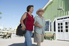 Höga par som går armen i arm Fotografering för Bildbyråer