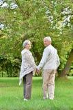 Höga par som går i höst, parkerar tillsammans fotografering för bildbyråer