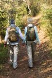 Höga par som går skogen Royaltyfria Bilder
