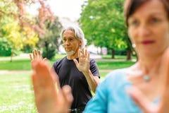 Höga par som gör Tai Chi In Park, Tuebingen, Tyskland Royaltyfri Bild