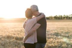 Höga par som omfamnar sig i ett vetefält, solljuseffekt royaltyfria foton