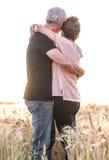 Höga par som omfamnar sig i ett vetefält, solljuseffekt Royaltyfri Bild