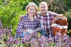 Höga par som sköter blommor i trädgården royaltyfria bilder