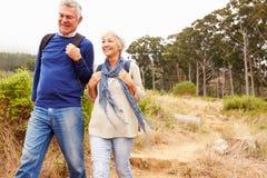 Höga par som tillsammans går i en skog, närbild royaltyfria foton