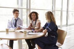 Höga sjukvårdarbetare i konsultation i en mötesrum royaltyfria bilder