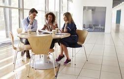 Höga sjukvårdarbetare i konsultation i en mötesrum royaltyfri bild