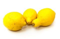 Höga syrliga citroner Royaltyfri Bild